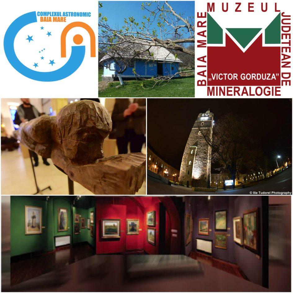 Noaptea Muzeelor Baia Mare 2017